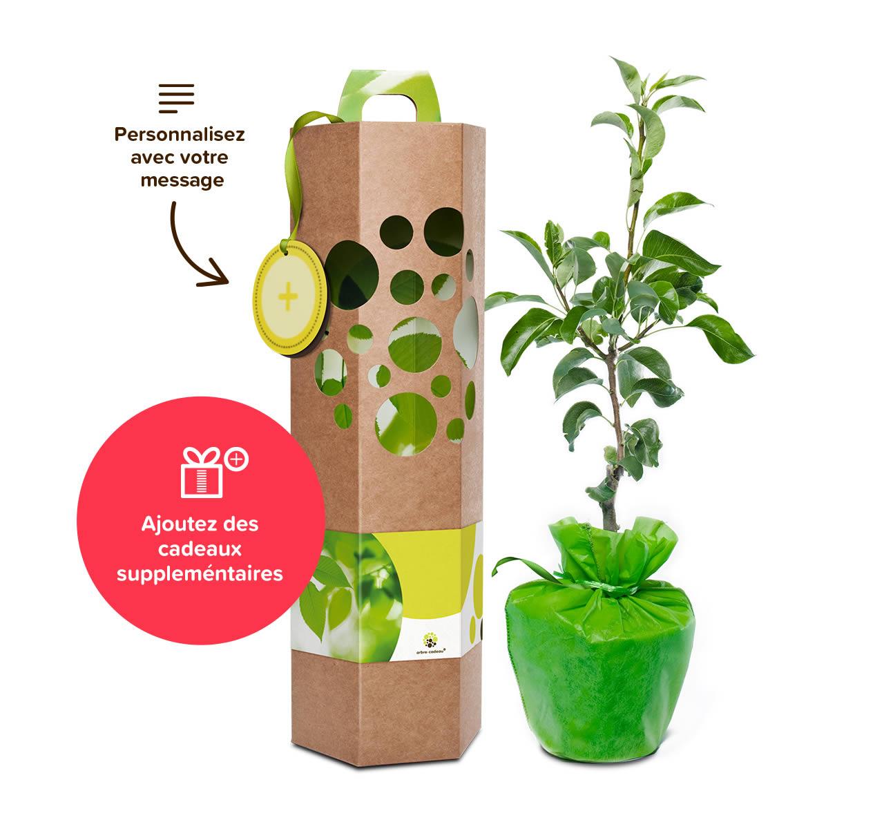 cadeau d 39 entreprise durable et original offrir un arbre. Black Bedroom Furniture Sets. Home Design Ideas