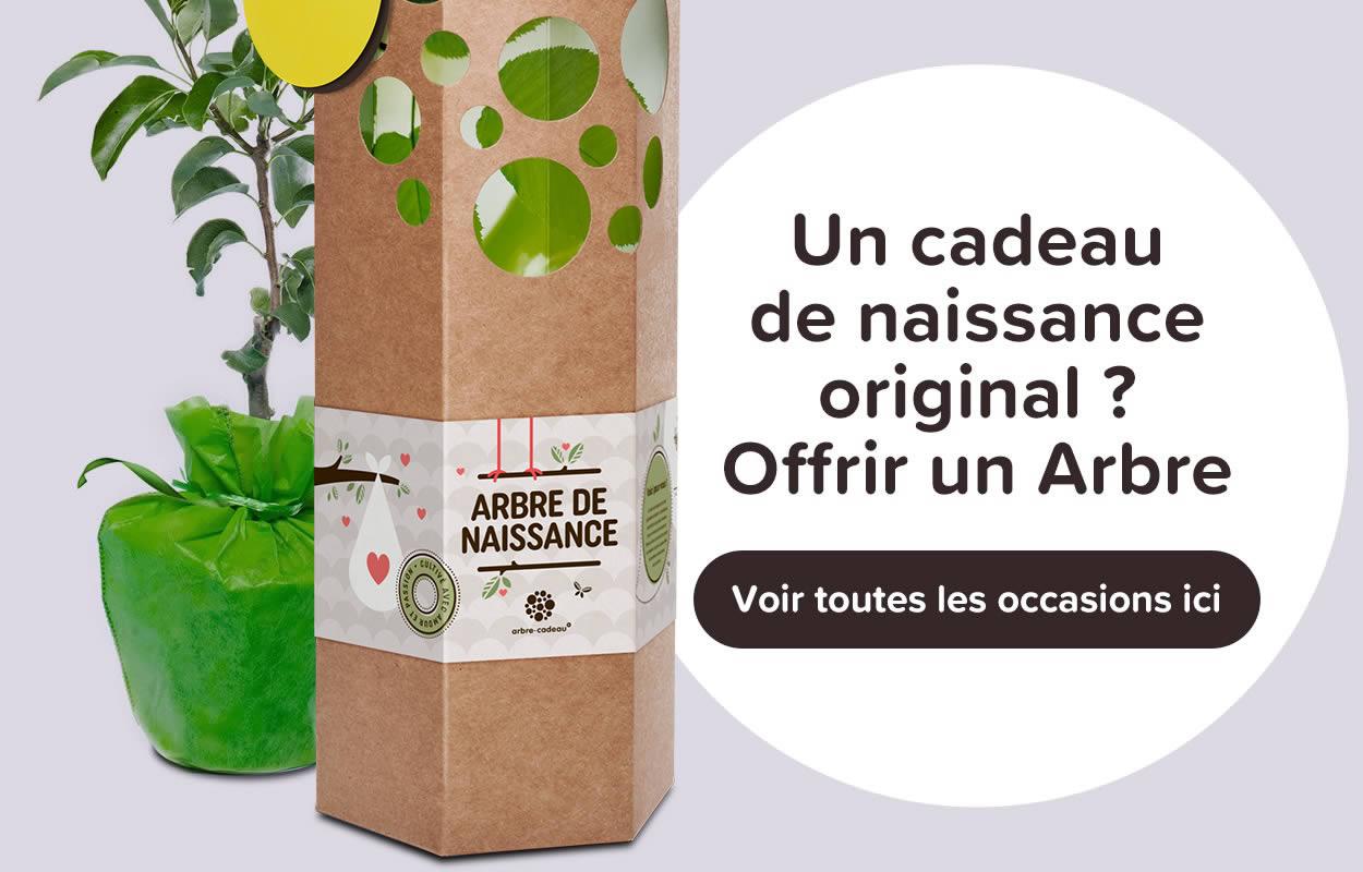 Qu Offrir Pour Une Naissance offrir un arbre à planter | cadeau personnalisé | emballage